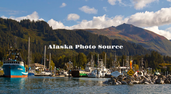 Alaska. Scenic view of the commercial and private fishing boats in the Seldovia Harbor.