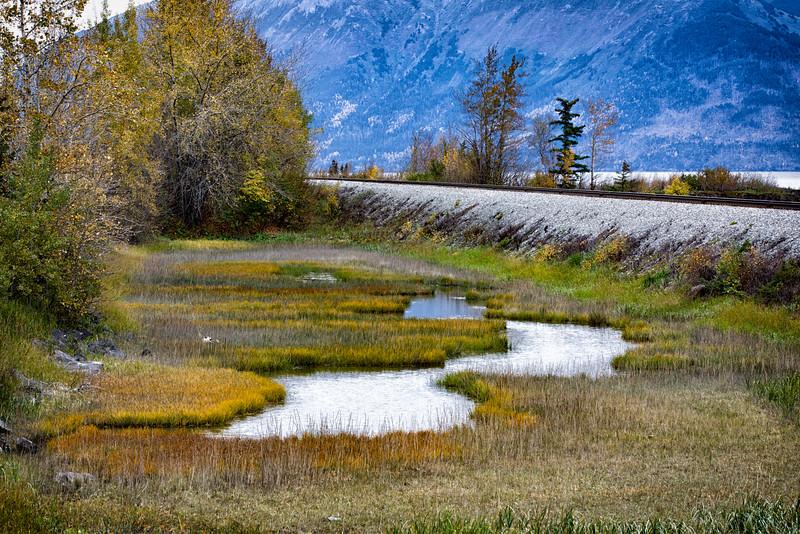 Alaskan Fall