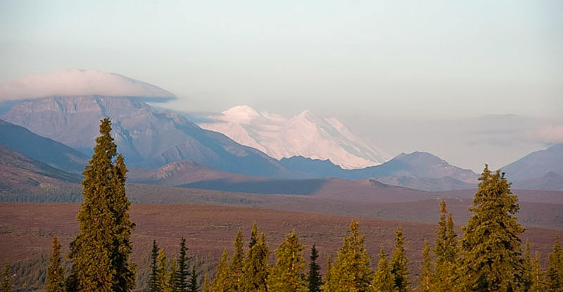 The Denali National Park