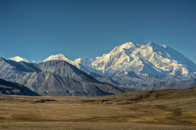 Only 30% of visitors to Denali actually get to see the mountain because of weather