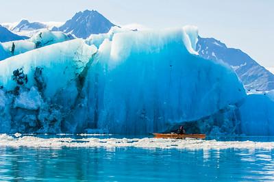 Kayaker paddles near an iceberg that just calved off of Bear Glacier, Kenai Fjords National Park, Alaska