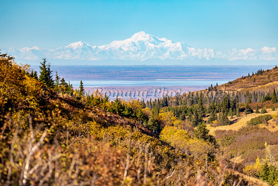Denali from Powerline Pass