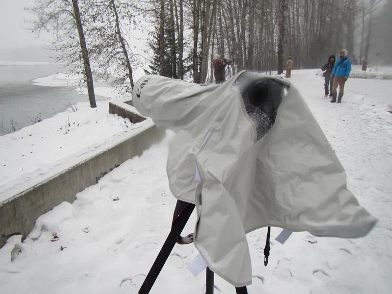 Canon cover on my Canon camera.