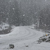 Heavy snowfall along the Haines highway near mile 25