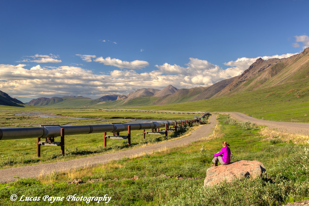 Woman taking in the view of the Trans Alaska Oil Pipeline and the Brooks Range on the North Side of Atigun Pass, Arctic Alaska.<br /> <br /> July 03, 2013