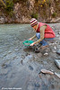 Melissa panning for gold in Caribou Creek near the Glenn Highway<br /> September 11, 2011