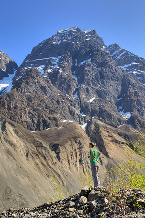 Female hiker taking in the view of the Chugach Mountains along the Eklutna Lake Trail in Chugach State Park, Alaska.<br /> <br /> May 11, 2014