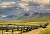 Semi truck driving the Haul Road (James Dalton Highway) along the Trans Alaska Oil Pipeline on the North Side of Atigun Pass in the Brooks Range, Arctic Alaska.<br /> <br /> July 03, 2013
