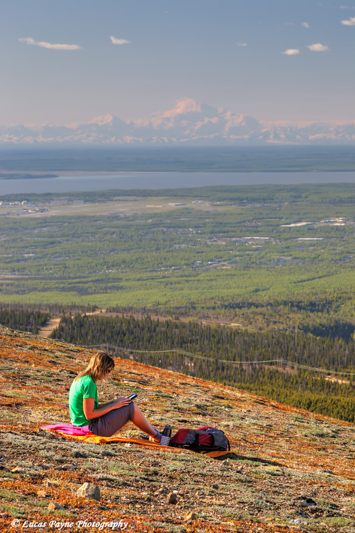 Woman looking at a tablet computer on Blueberry Hill with Denali (Mt. McKinley) in the distance, Chugach State Park, Anchorage, Alaska<br /> <br /> June 06, 2013