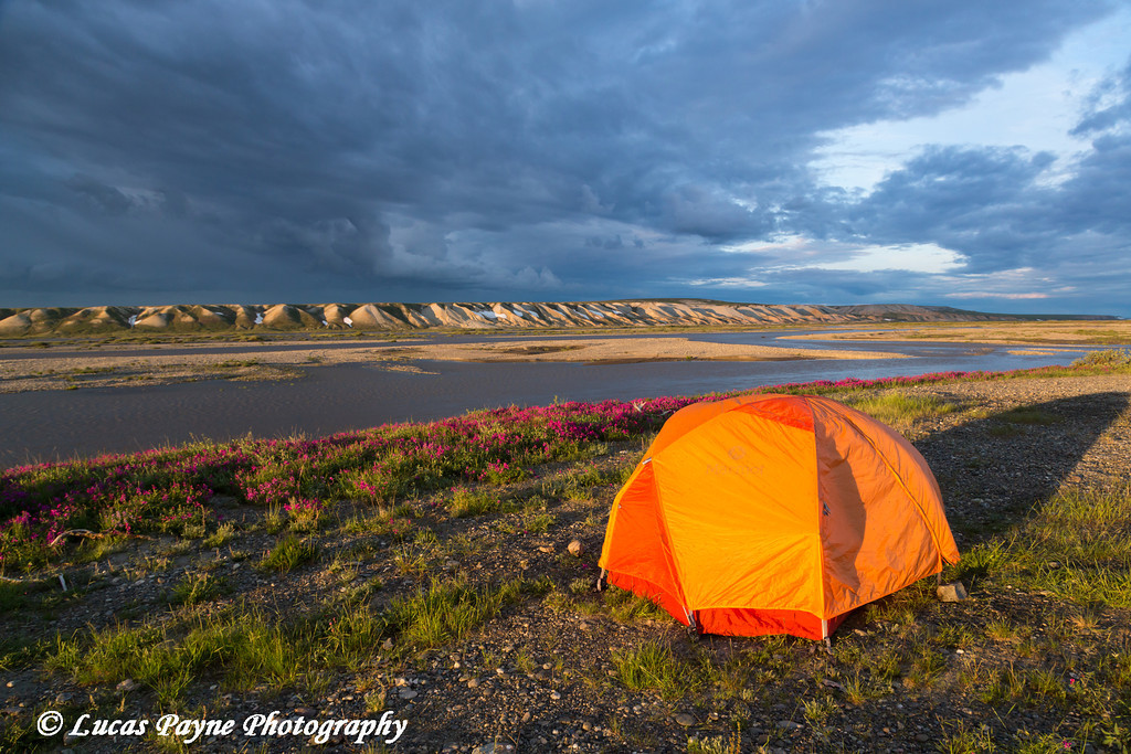 Tent camping along the Sagavanirktok river with the Franklin Bluffs in the Background, North Slope, Arctic Alaska.<br /> <br /> July 04, 2013