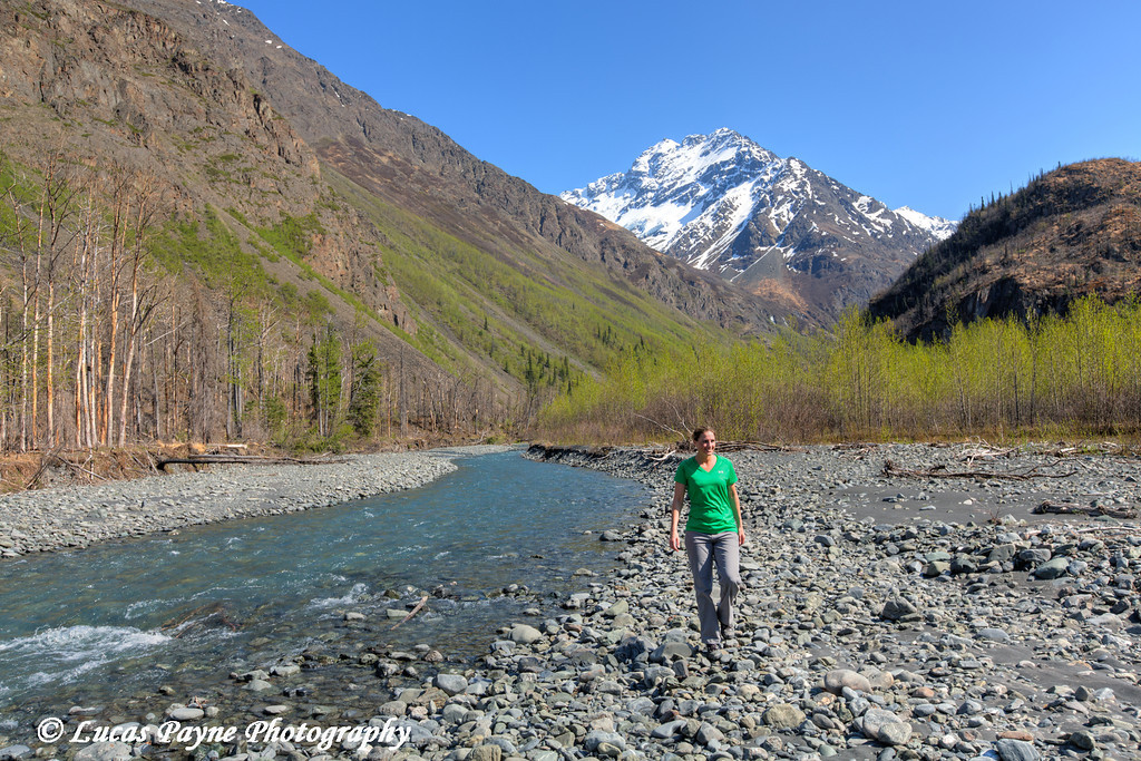 Female hiker walking along the East Fork Eklutna River and Chugach Mountains, Chugach State Park, Alaska.<br /> <br /> May 11, 2014
