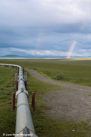 A rainbow and the Trans Alaska Pipeline from the Haul Road (James Dalton Highway), Arctic Alaska.<br /> <br /> July 03, 2013