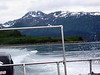 Kachemak Bay from the water taxi.