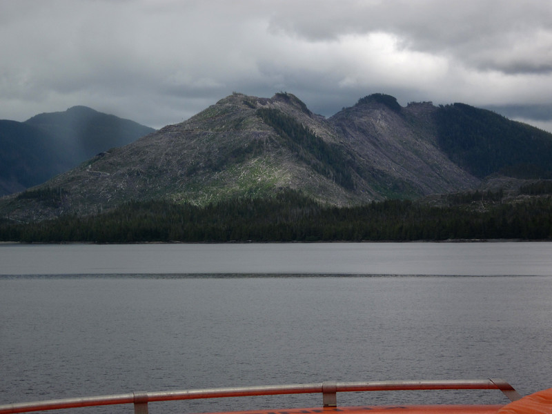 As we head north along the Tongass National Forest, there are many large clearccuts.
