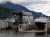 We had booked an Aleutians trip on the Tusty, but repairs are taking longer than expected--so no go.