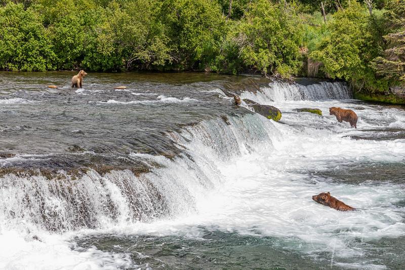 Brooks Falls, Katmai National Park, Alaska