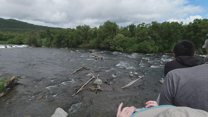 Video - Below the falls platform