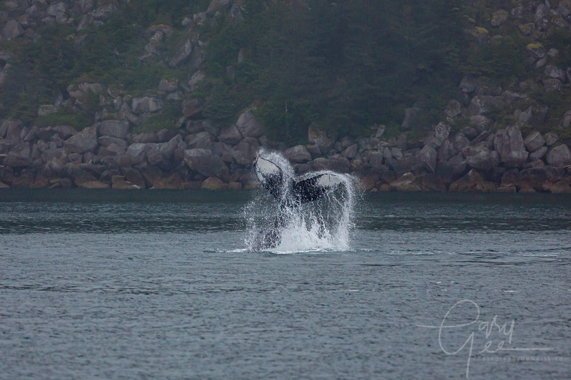 and a couple of funky tail waves to exit on...