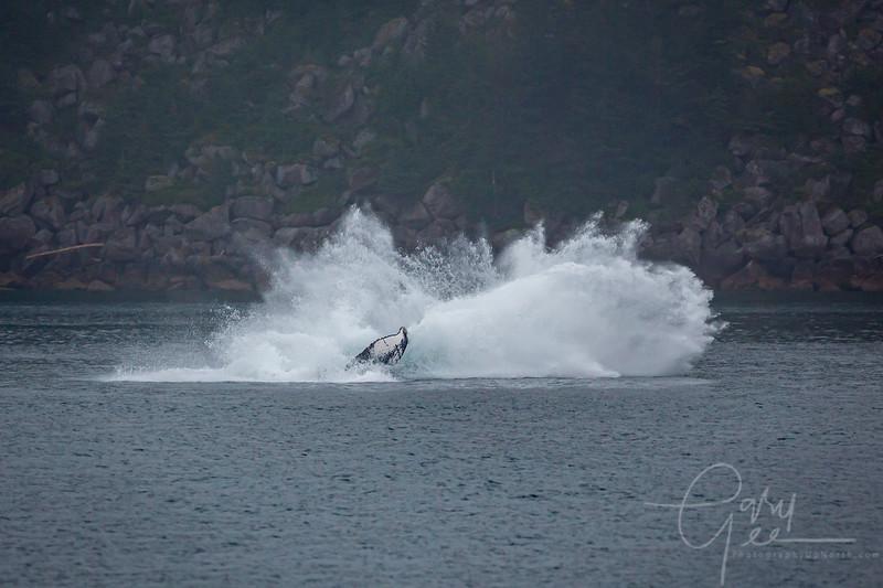 ...and Ker-Splash!