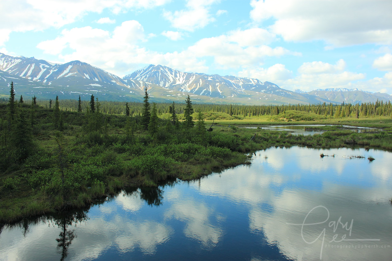 Denali Highway Reflection