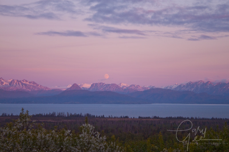 Cook Inlet Homer, Alaska
