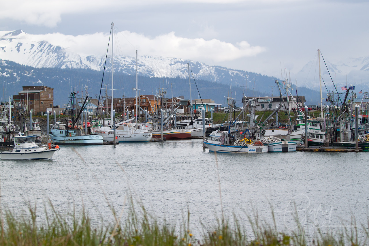 Homer, Alaska Harbor