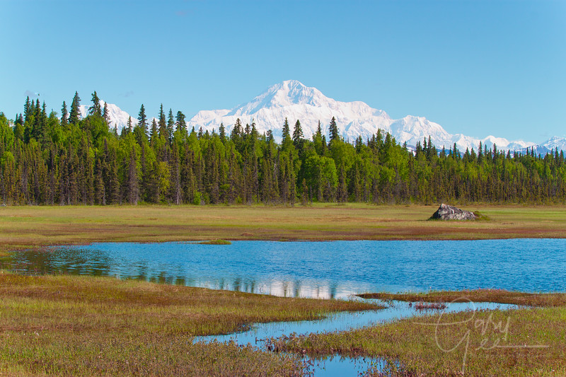 Denali - Mt. McKinley