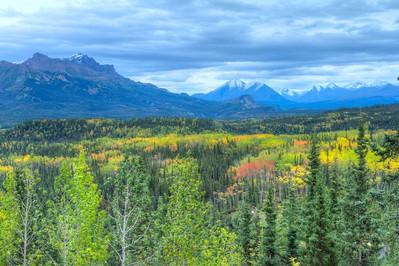 View at Denali National Park