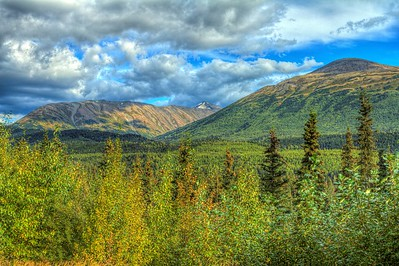 Lush landscape of the Tundra, Alaska