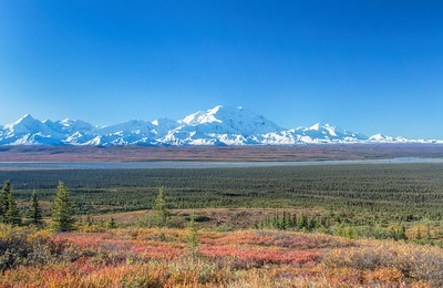 View of Mt Denali