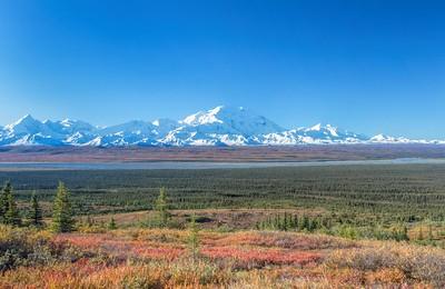 View of Mt Denali