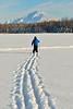 Skiing toward Pioneer Peak on a frozen lake near Wasilla.