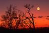 Alaska moon rise and sunset.