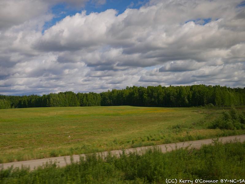 Open field near Palmer, AK