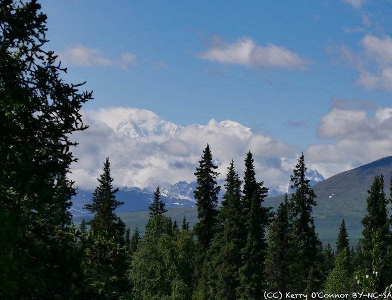 Mt Denali!!!!