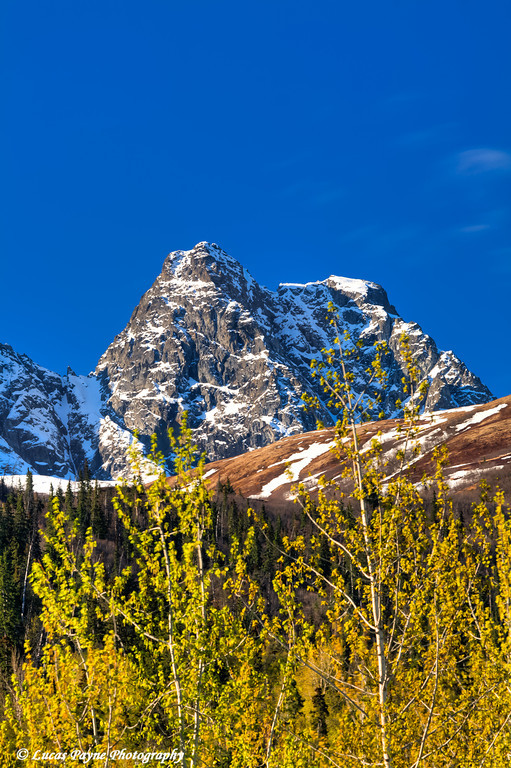 The Chugach Mountains on a Sunny Spring Day<br /> HDR<br /> May 18, 2011