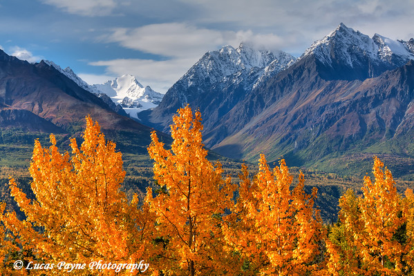 Fall foliage and the Chugach Mountains along the Glenn Highway<br /> HDR<br /> September 08, 2011