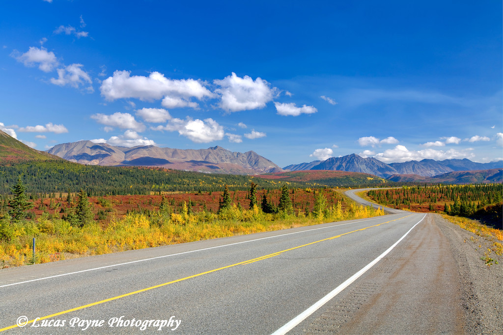 Fall colors along the George Parks Highway near Cantwell<br /> September 02, 2010