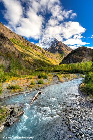 View of trees changing colors along the East Fork of the Eklutna River from the Eklutna Lake Trail in Chugach State Park<br /> HDR<br /> <br /> September 09, 2012