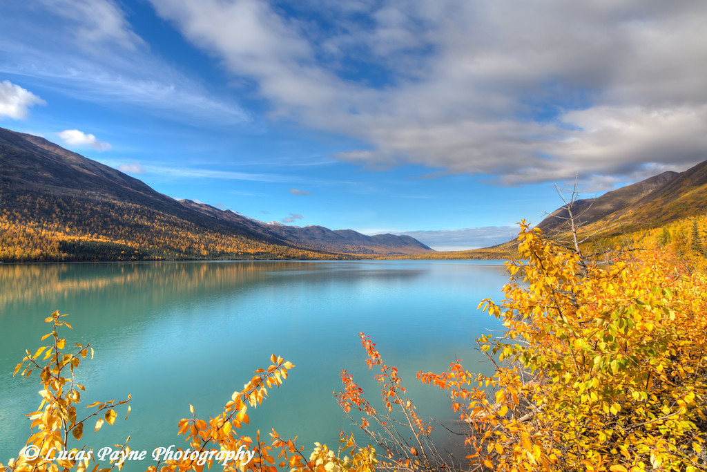 Fall foliage along Eklutna Lake in Chugach State Park, Southcentral Alaska.<br /> <br /> September 29, 2013