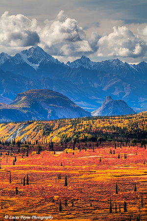 Scenic view of fall colors and the Chugach Mountains from Alascom Road near Sheep Mountain<br /> HDR<br /> September 08, 2011