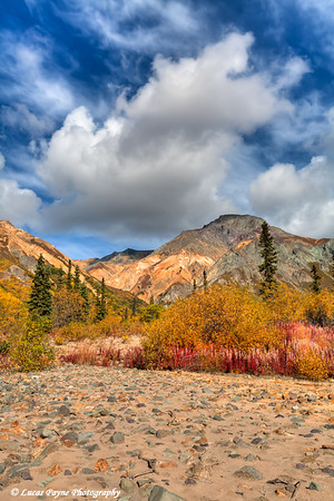 Fall colors and a dry mountain stream bed at Sheep Mountain along the Glenn Highway in the Talkeetna Mountains.<br /> HDR<br /> September 08, 2011