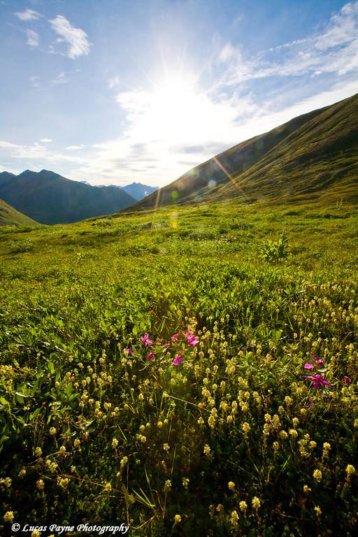 Sunrise at Hatcher Pass near Palmer, Alaska.  (HDR)<br /> August 12, 2010