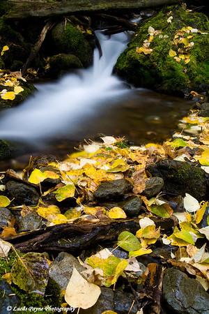 Falls Creek along the Seward Highway near Turnagain Arm in Alaska.<br /> October 03, 2009