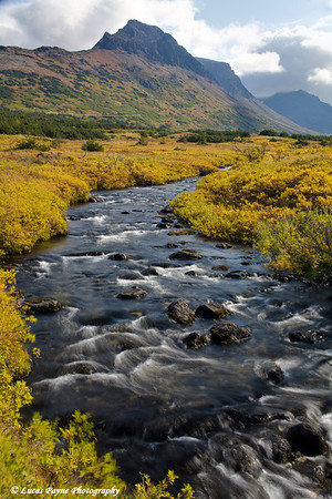 Stream in the Chugach Mountains near Anchorage, Alaska.<br /> September 07, 2009