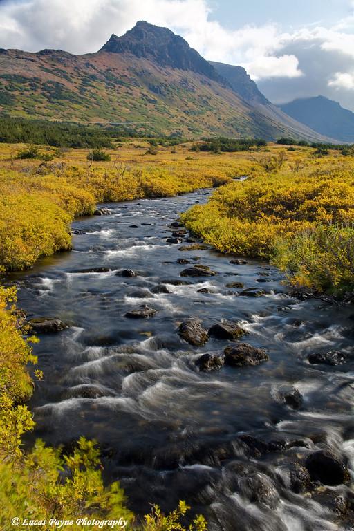 Stream in the Chugach Mountains near Anchorage, Alaska.<br /> September 07, 2009