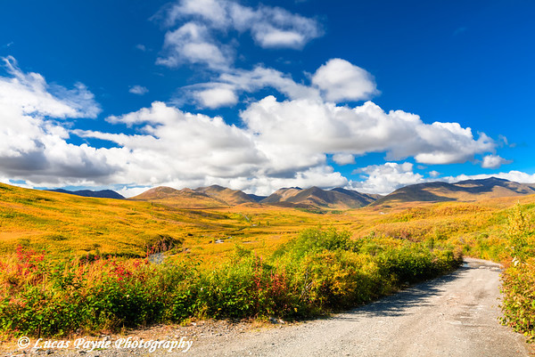 Fall colors along the Petersville Road in the Peters Hills<br /> HDR<br /> September 01, 2011