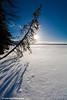 Skilak Lake<br /> January 22, 2011