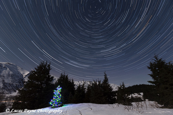 Star trails circle above a Christmas Tree in the Chugach Mountains at Turnagain Pass on the Kenai Peninsula, Alaska.<br /> <br /> April 11, 2014