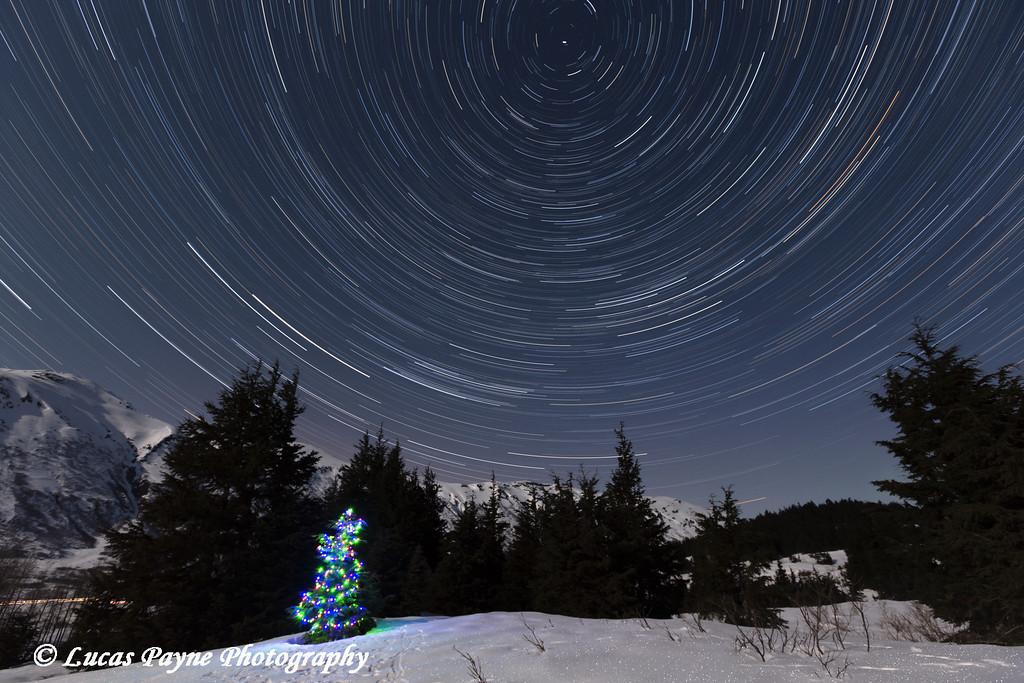 Star trails circle above a Christmas Tree in the Chugach Mountains at Turnagain Pass on the Kenai Peninsula, Alaska.<br /> <br /> April 11, 2014